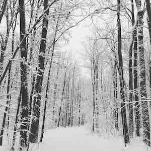 winter running running coach shelly Minnesota