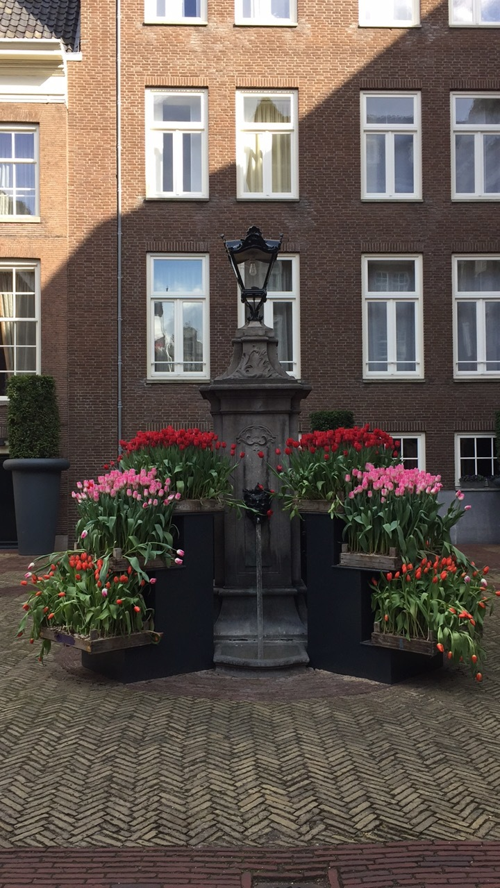 Flowery fountain in Amsterdam