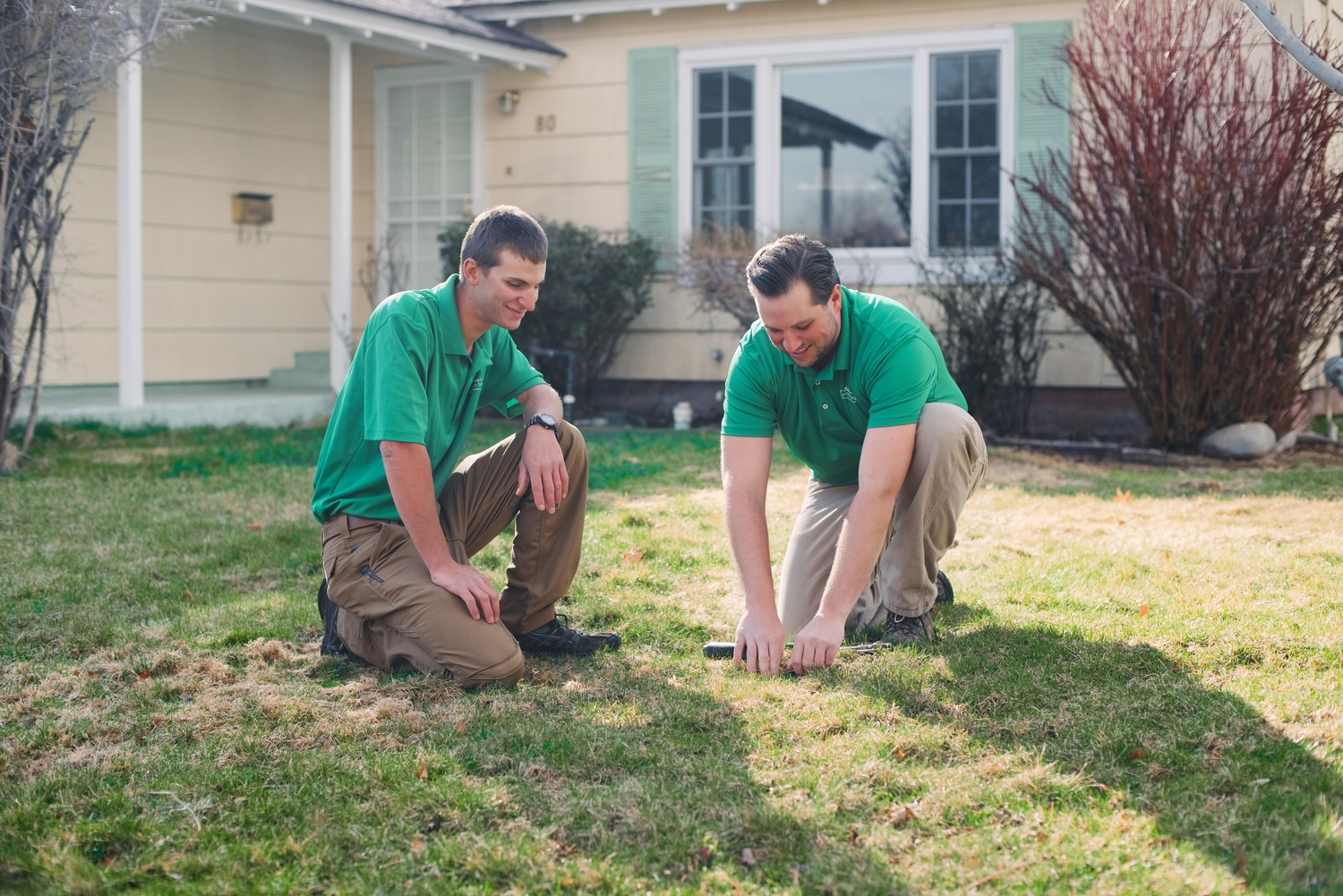 - Residential Lawn Care Reno & Sparks Cory's Lawn Service