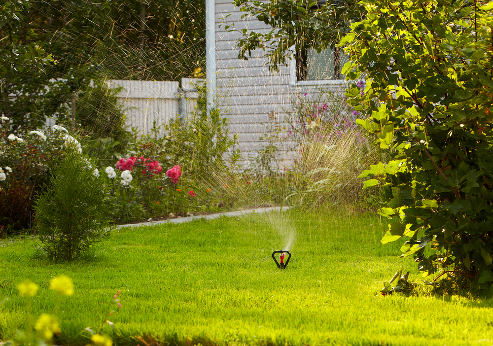 How to Prepare Your Lawn For the Winter (Guest Post) — Residential