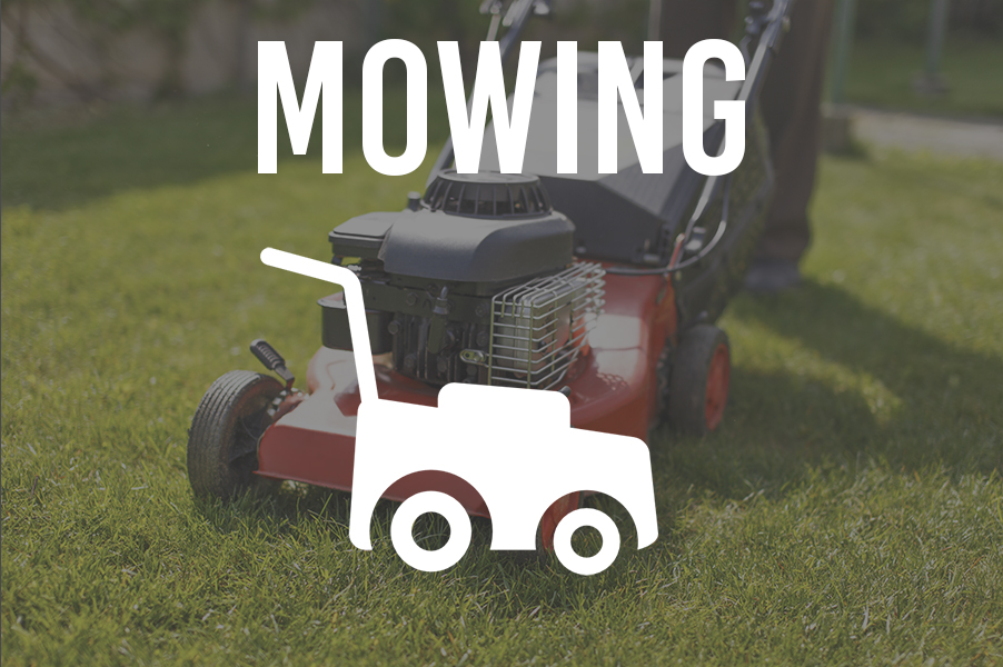 Lawn Mowing Service