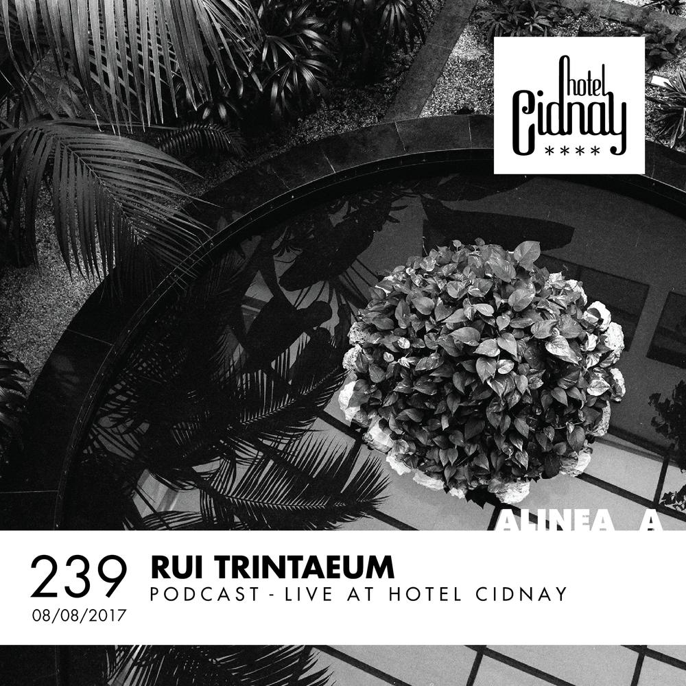 Rui Trintaeum 239