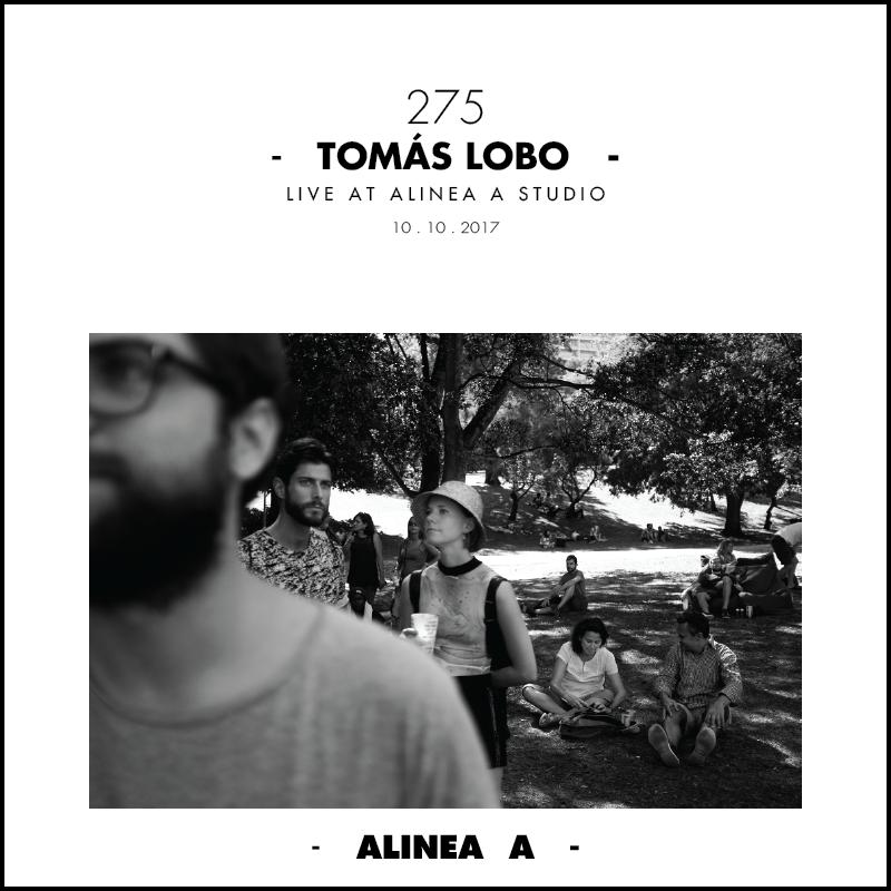 Tomas Lobo 275