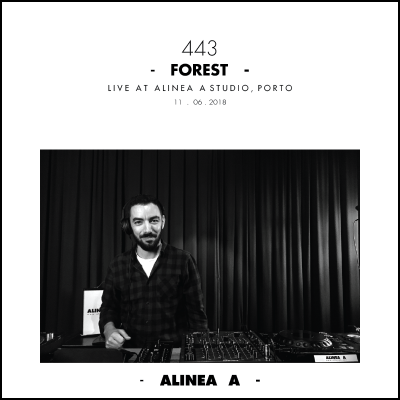Forest+443.png