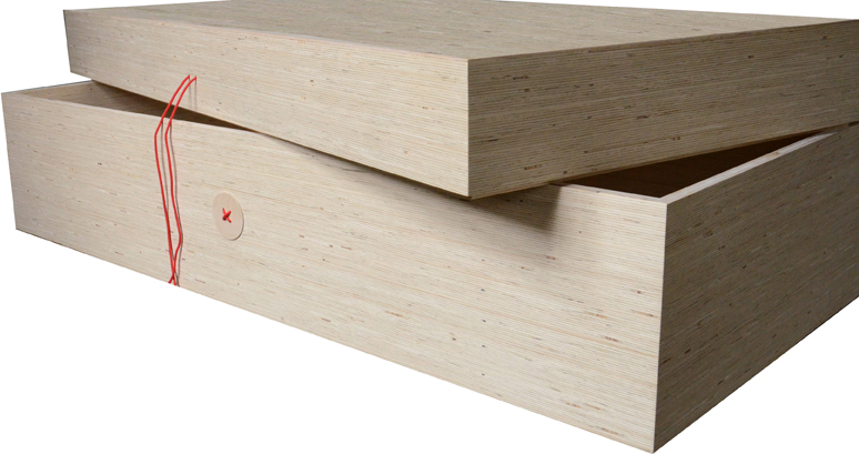 PU-REST case hout