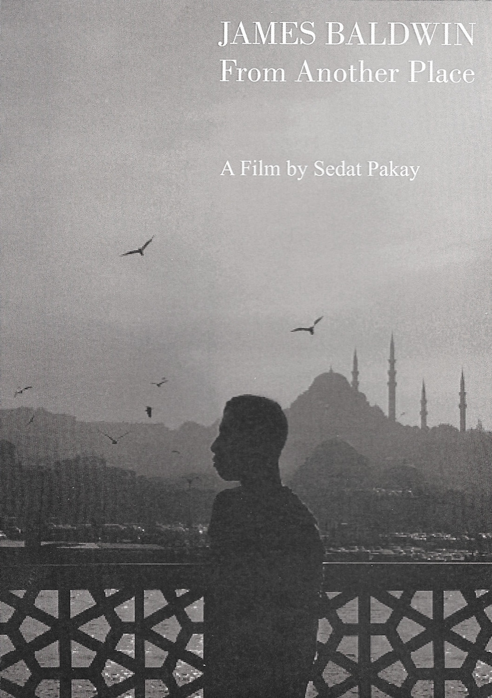 James Baldwin: From Another Place (Director: Sedat Pakay)
