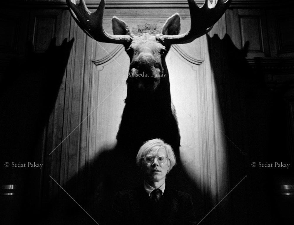 Andy Warhol, Artist