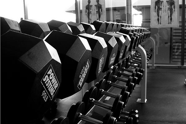 chiropractic improves strength.jpg