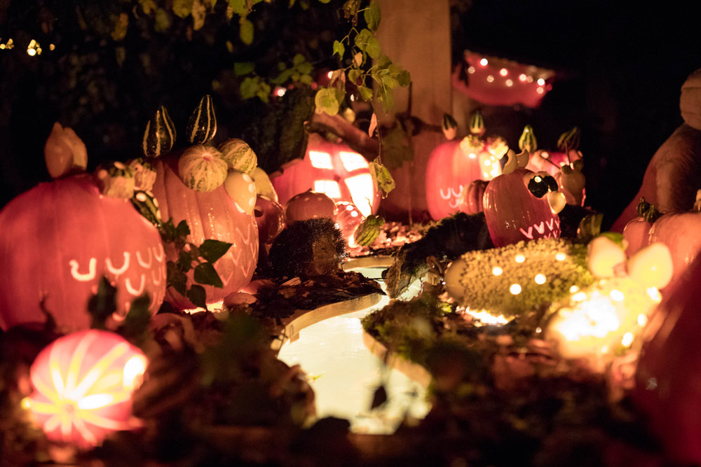 Pumpkin-014.jpg
