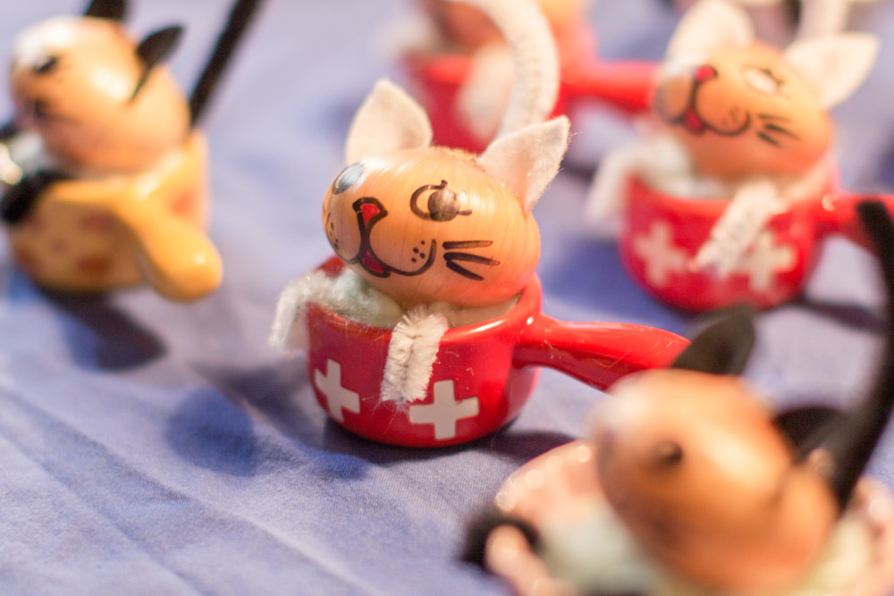 onion-market-festival-zibelemaerit-fondue-cats-bern-something-swiss.jpg