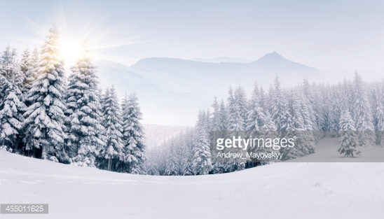 Photo by Andrew_Mayovskyy/iStock / Getty Images