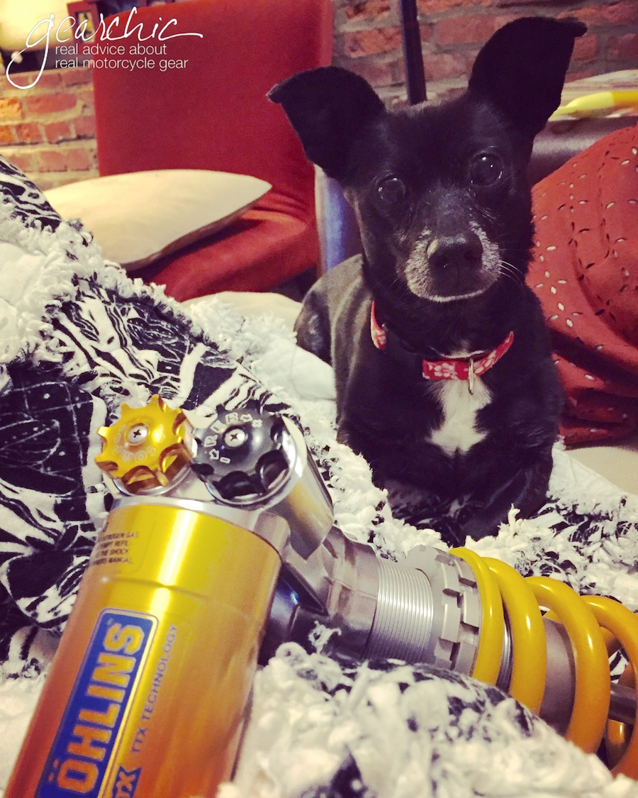 Benny, with the original Ohlins Shock that was gifted to me by the best husband, ever.