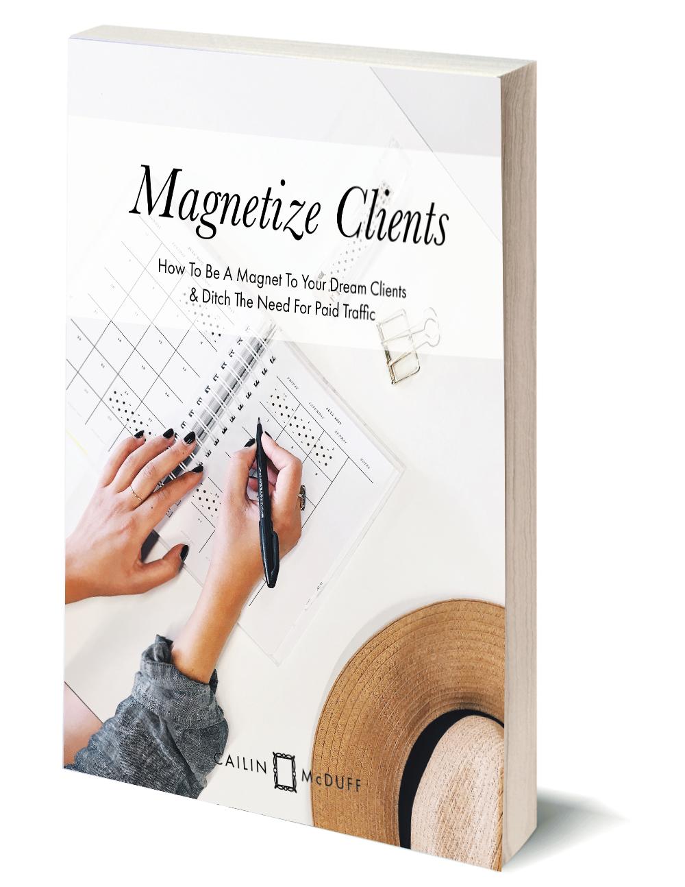 Magnetize Ebook Image.png