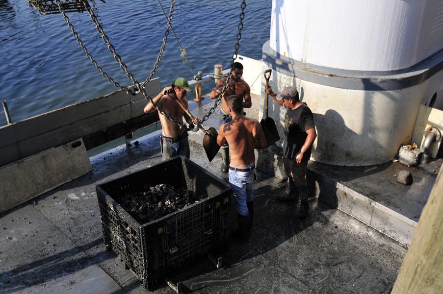 Docks 8-2-11 09.jpg