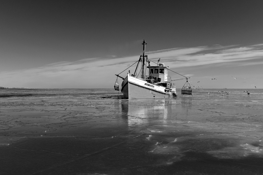 iceboats02-03-1560bw.jpg