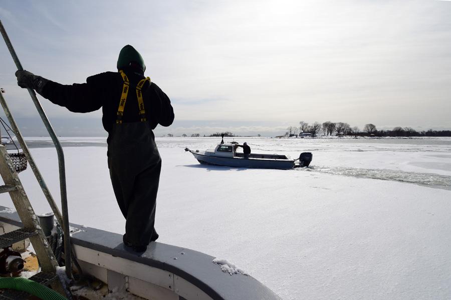 iceharbor 11.jpg
