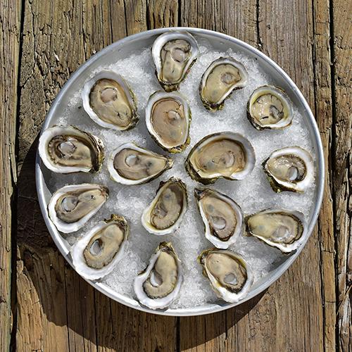 Oysters Ram Island 3.jpg