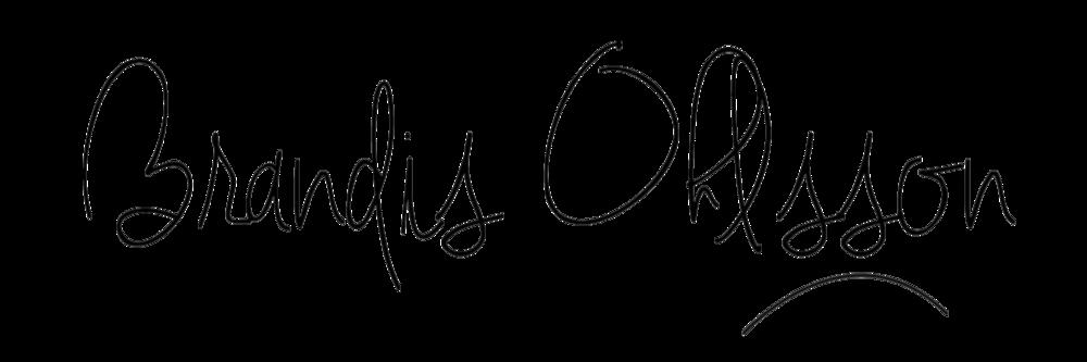 brandis ohlsson logo 2.png