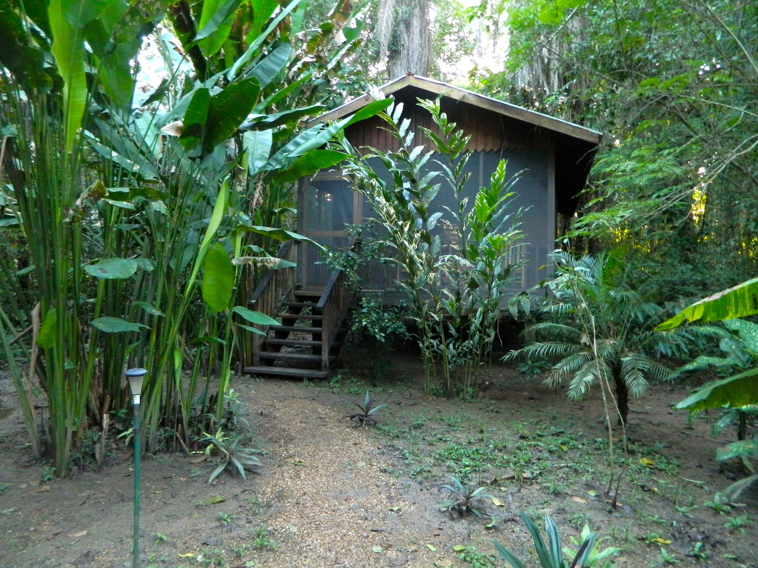 Our humble jungle abode.