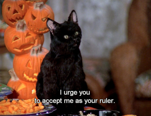 Salem, the OG black cat of Halloween from Sabrina the Teenage Witch.