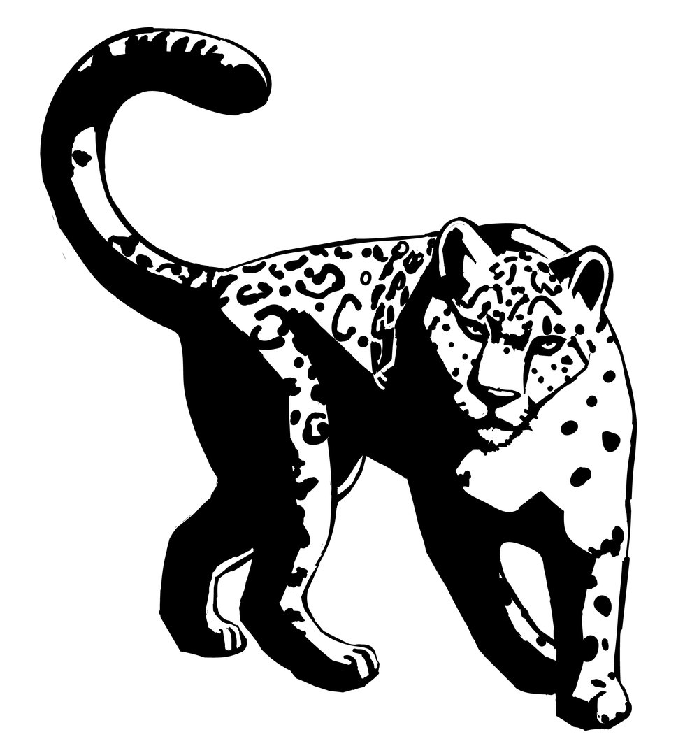 leopard_black_xl.jpg