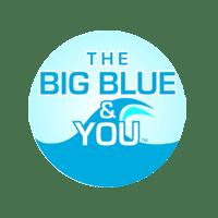 BigBlueNEWLogo-TM--300x300.png