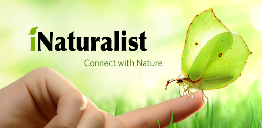 iNaturalist-logo.png