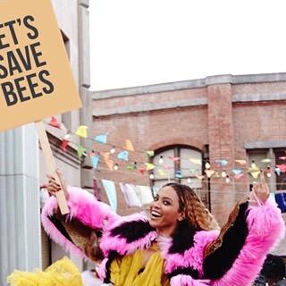 #beesforbey beesforbey.com