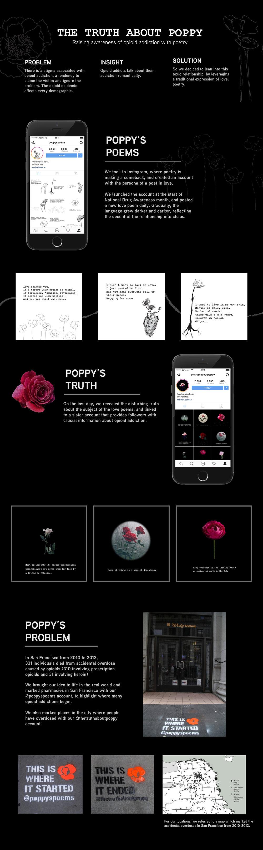 poppy board for portfolio - with photos.jpg