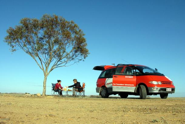 Alpha-campervan-road-trip-tree.jpg