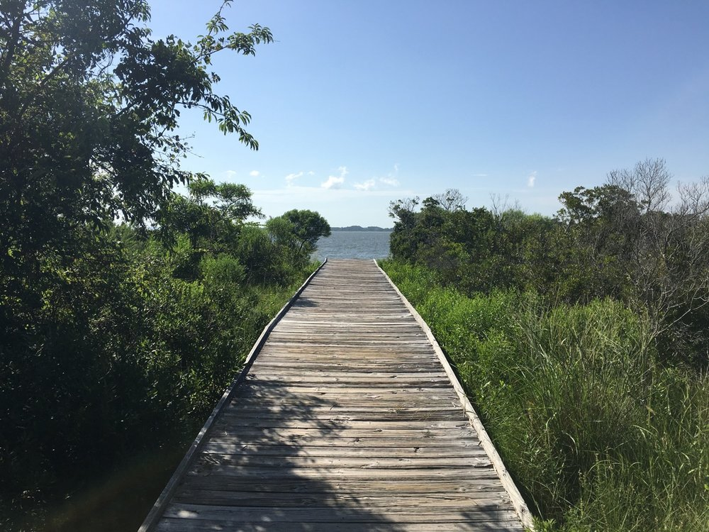 Many of the trails, like this one at Bayside, have boardwalks.