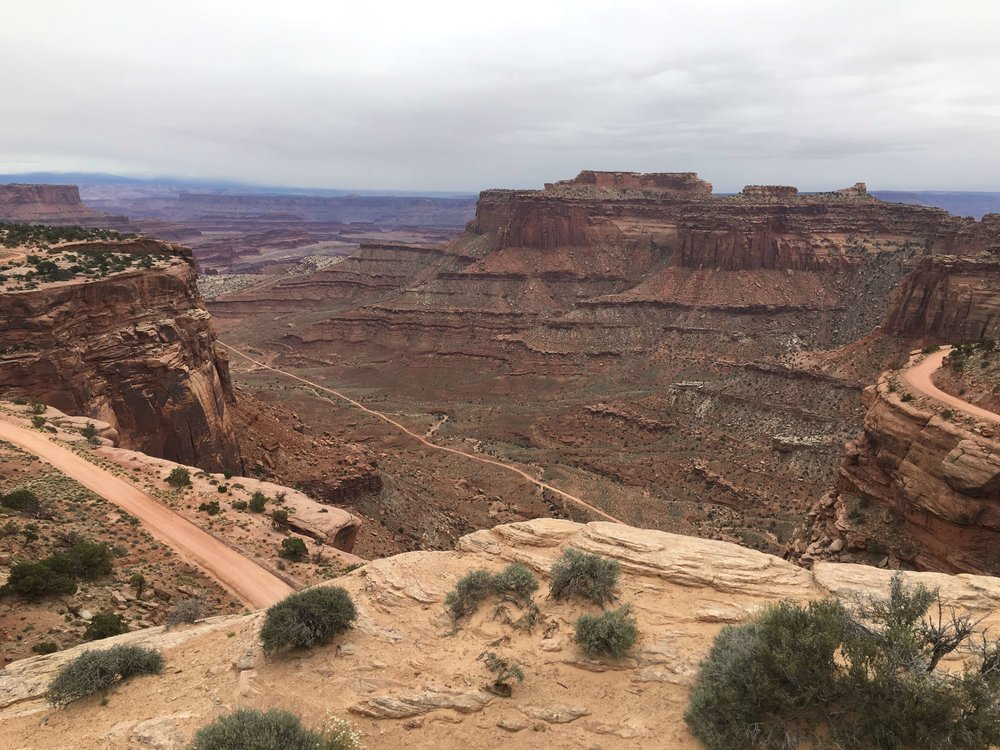Canyonlands National Park, photo by Amy Beth Wright.