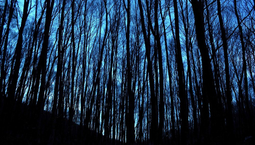 Night Hike, Cuyahoga Valley National Park, Northeastern Ohio