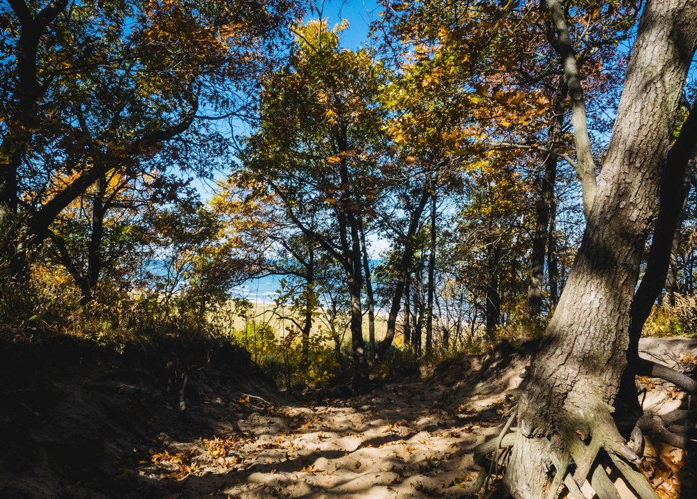 Road Trip: Indiana Dunes National Lakeshore