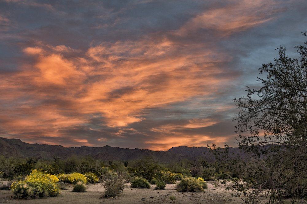 Anza-Borrego Desert State Park,  photo  by John Fowler / CC 2.0