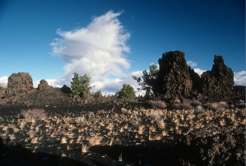Devil's Orchard, photo courtesy National Park Service.