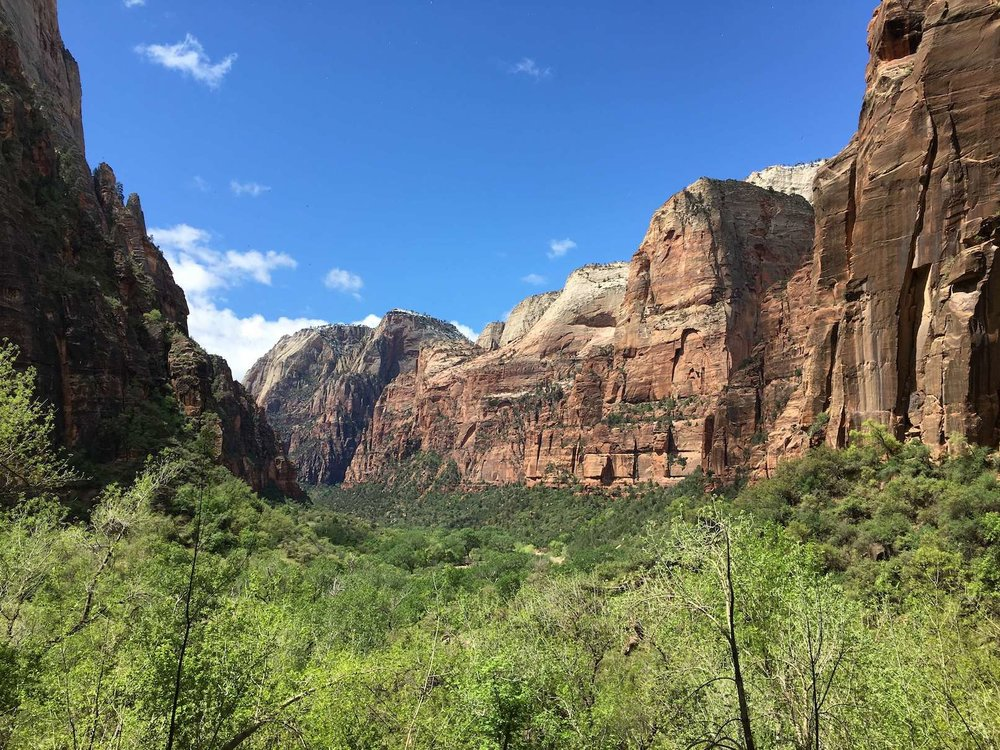 Zion National Park, photo by Derek Wright.