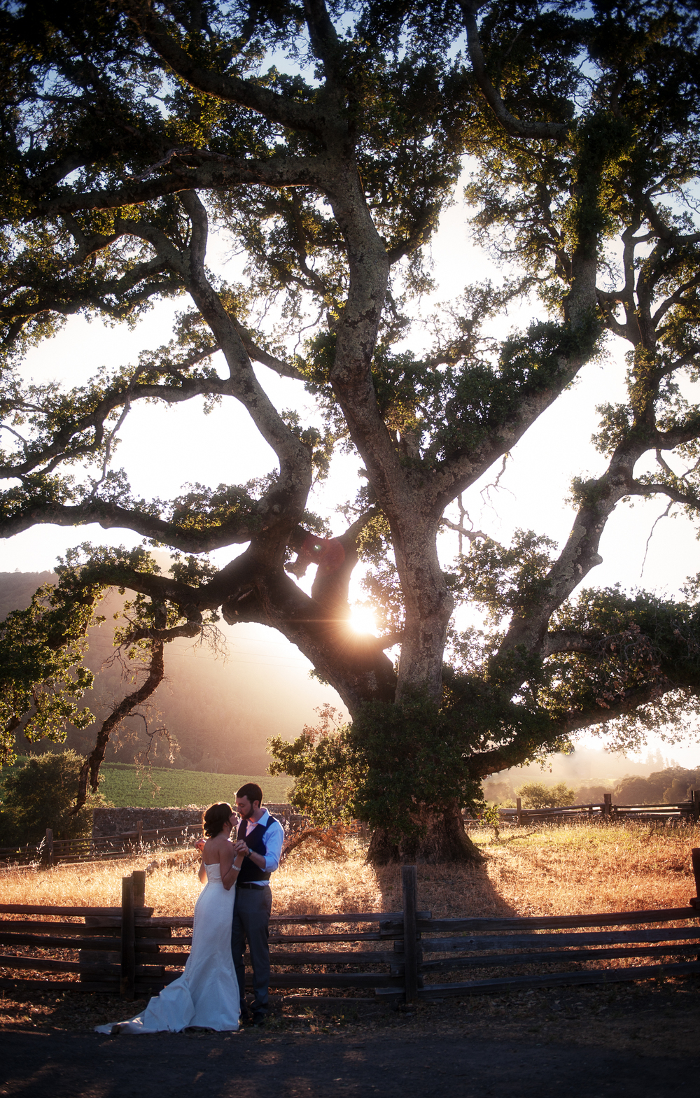 Jack London State Historic Park Wedding, Napa Valley Wine Country, CA