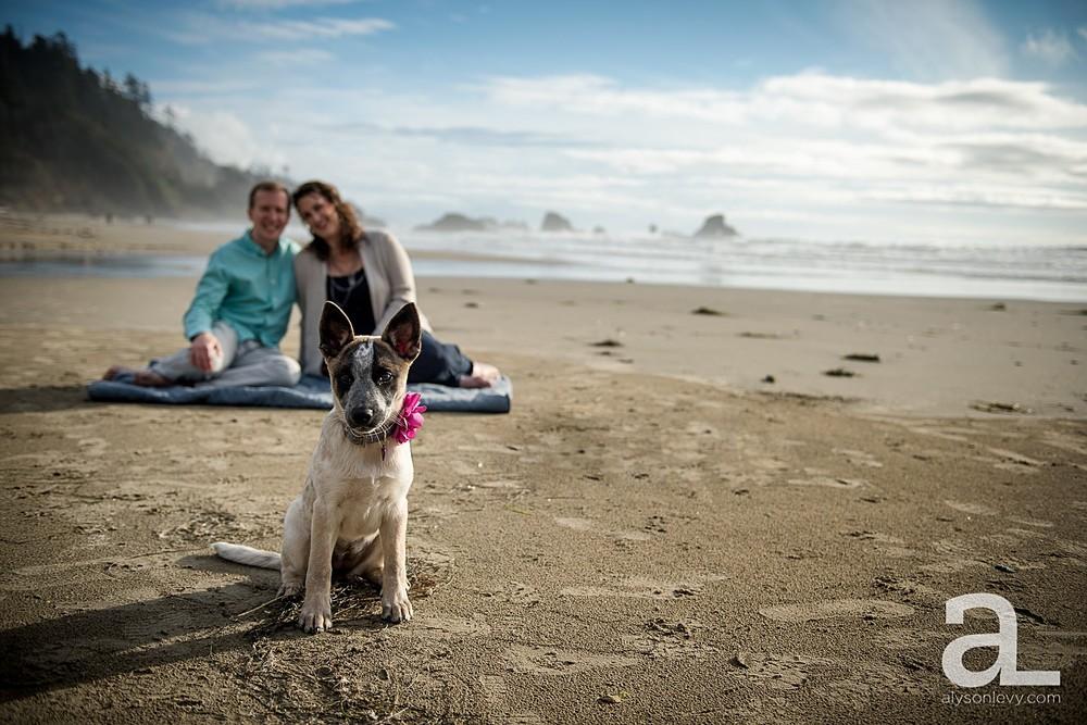 Oregon-Coast-Engagement-Photography_0002.jpg