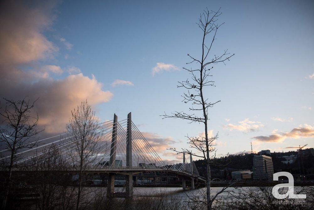 Portland-Tilikum-Bridge-Proposal-Engagement-Photography_0019.jpg