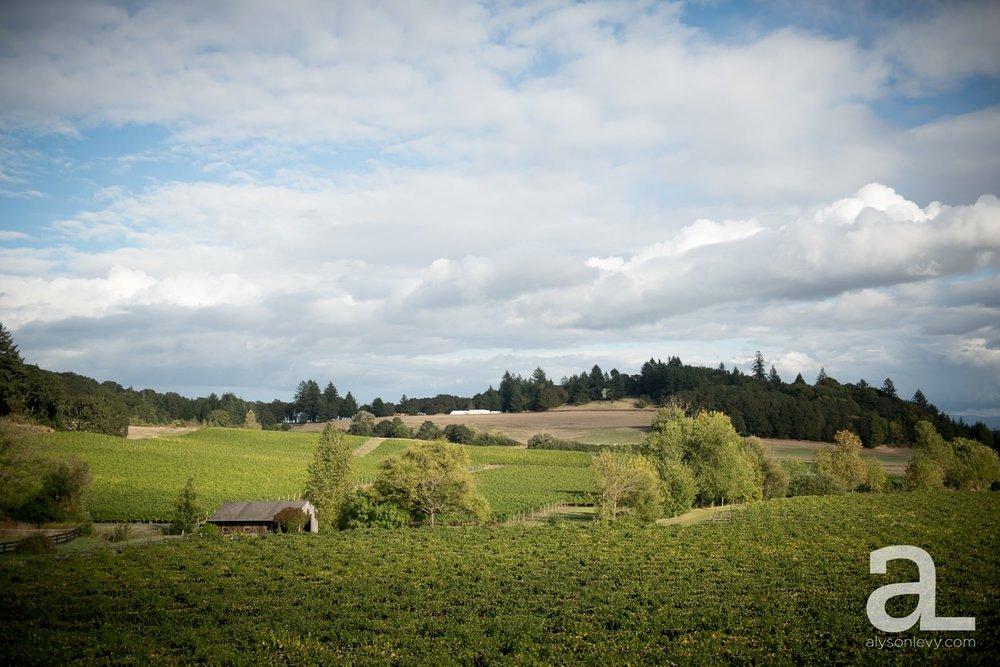 Zenith-Vineyards-Salem-Oregon-Wedding-Photography_0032.jpg