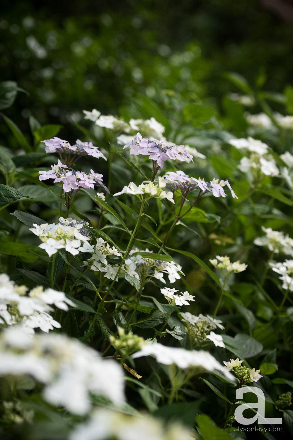 Leach-Botanical-Garden-Portland-Wedding-Photography-025.jpg