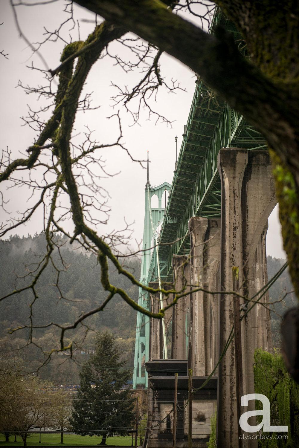 Cathedral-Park-Portland-Wedding-Photography-023.jpg