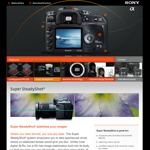 Sony alpha DSLR 2 500x500.jpg