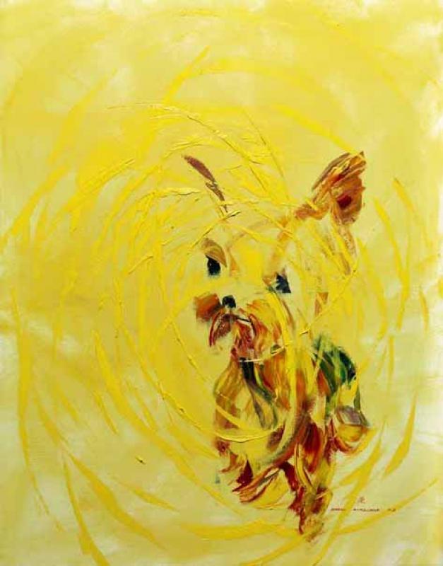 黃色迷團 Yellow Mystery