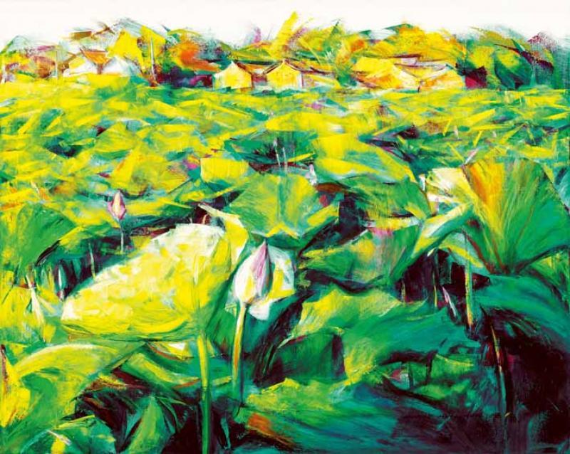 晨荷 Lotus in the Morning