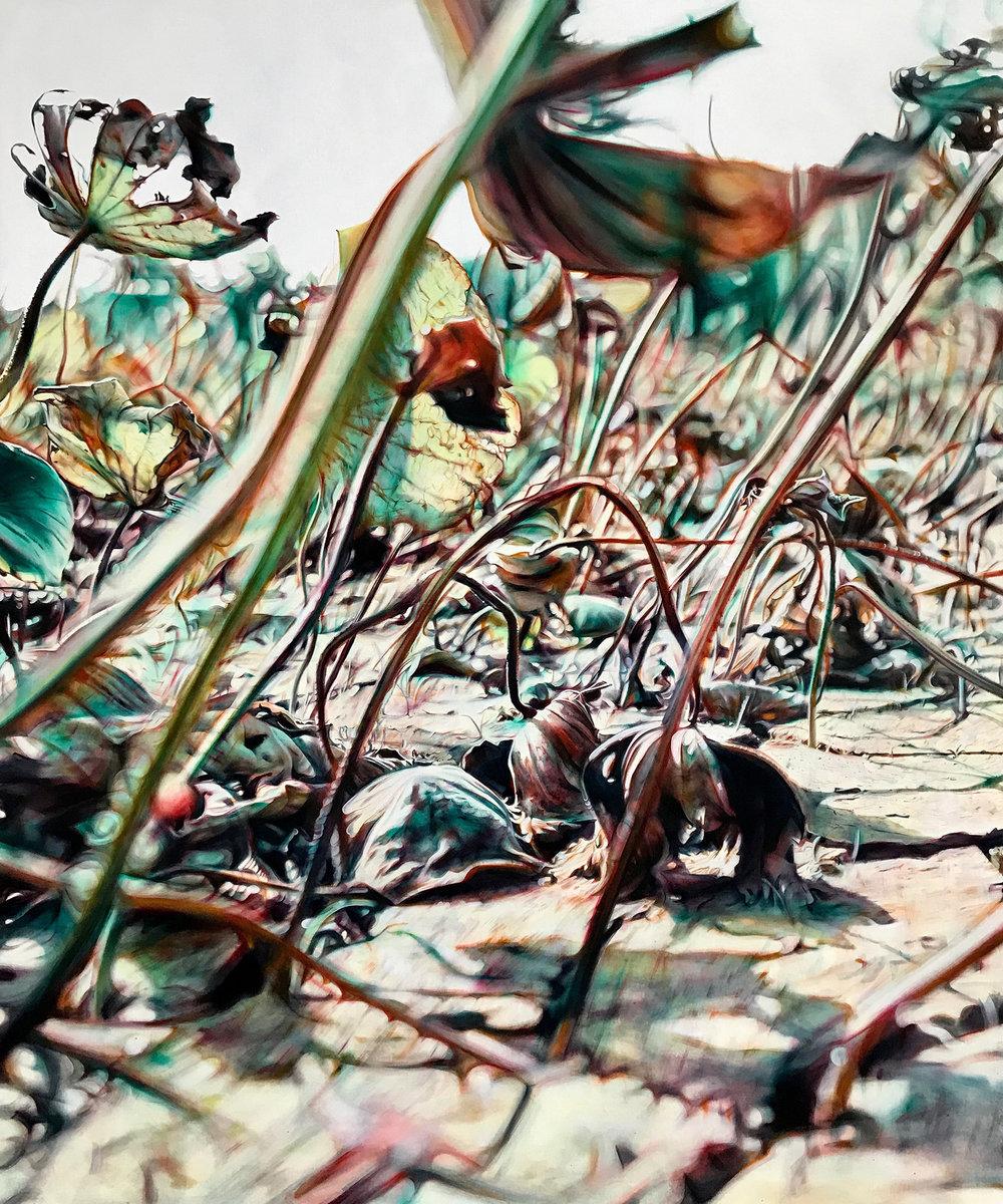 涸・荷1 Lotus Gone Dry 1