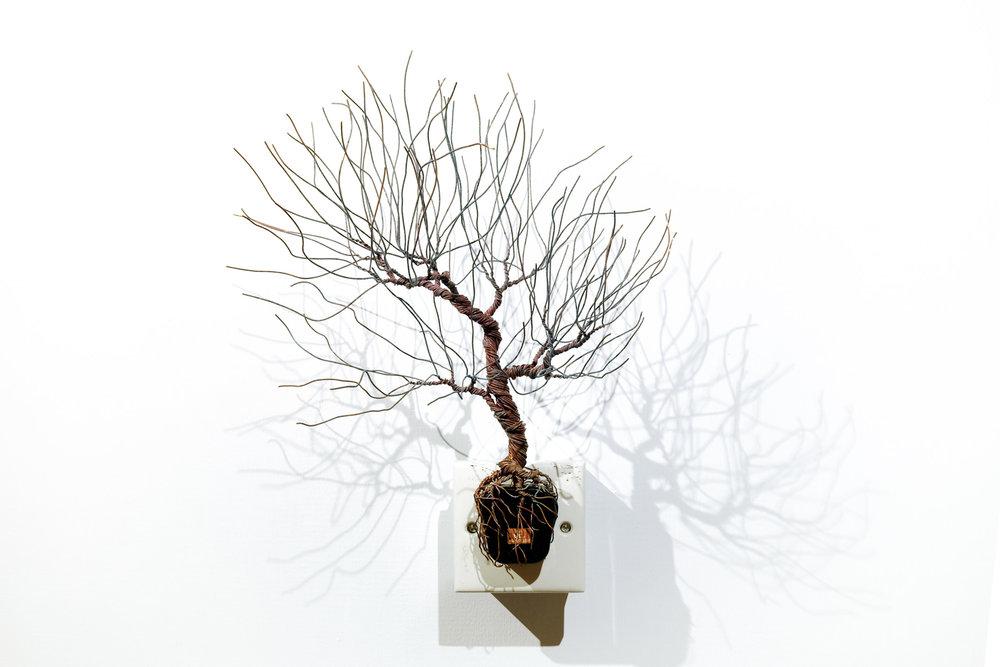 銅樹 之十五  Socket Tree XV