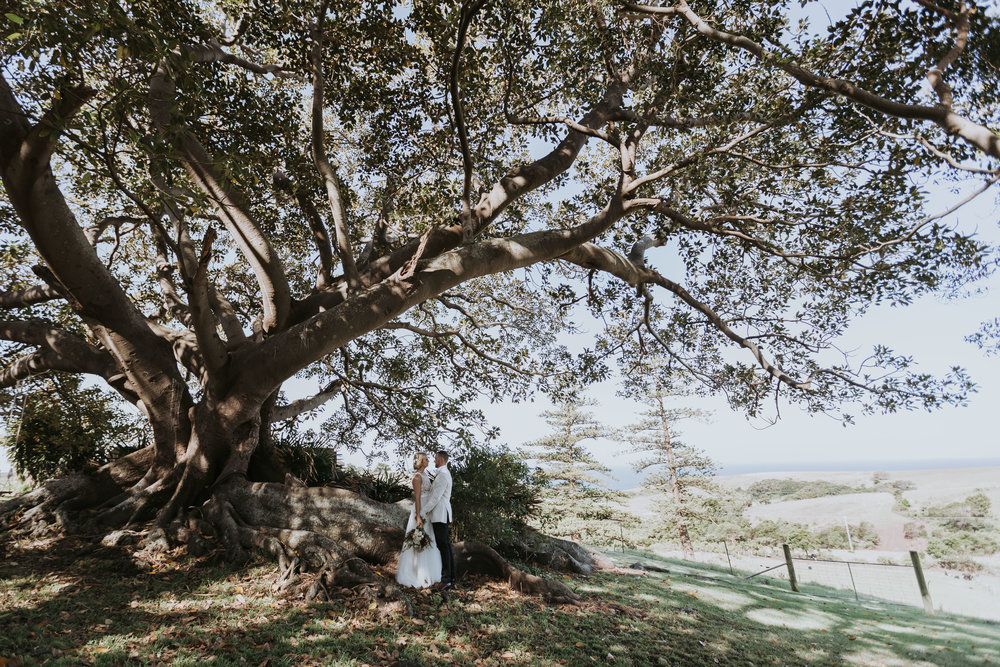 Bride and groom photo under fig tree. Bush bank wedding. South coast wedding photography.