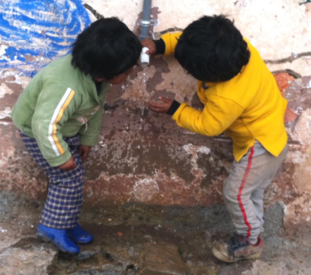 Drinking water Wayllarcocha.jpg